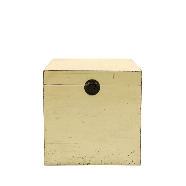 Painted Pine Trunk Box - White
